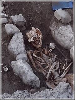 Squelette de pèlerin, Une des coquilles St-Jacques est visible sur l'épaule gauche (à droite de l'image)